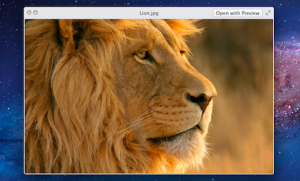 Quick Look In Lion | Plus Handy Tips And Tricks
